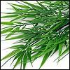 künstliches Bambusgras