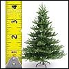 Tannenbäume 180cm