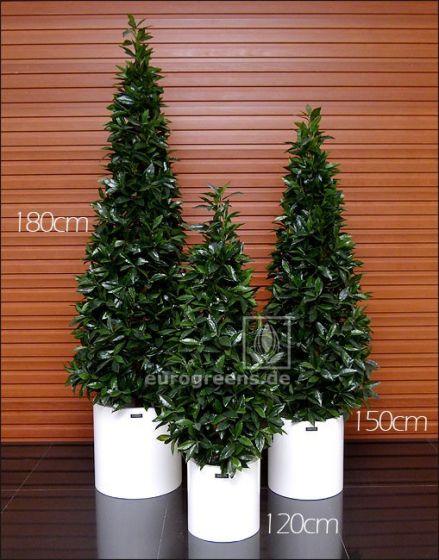 Kunstpflanze Naturstamm Lorbeerpyramide ca. 170cm