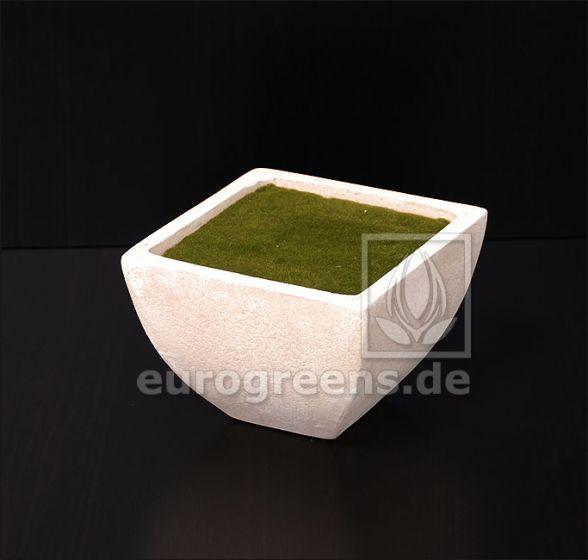 gefüllter Pflanztopf in Steinoptik 14x14x10cm (LxBxH)