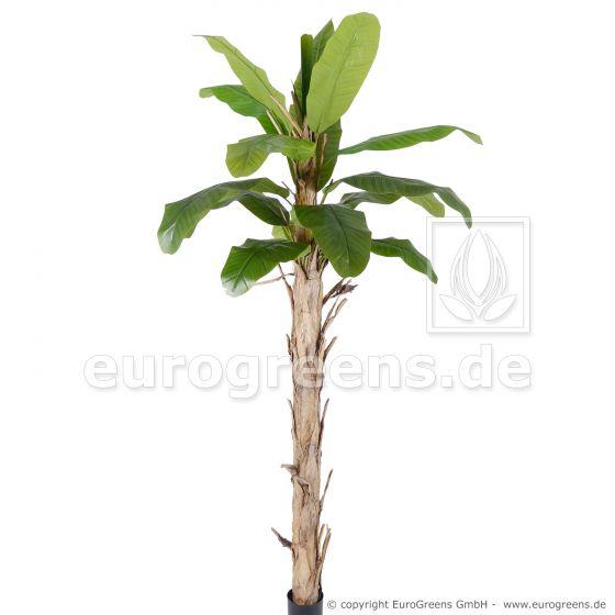künstliche Bananenpalme ca. 260cm
