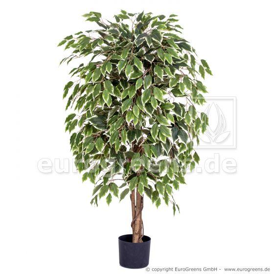 künstliche Ficus Exotica ca. 120cm