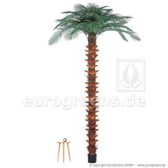 künstliche Pindo-Palme ca. 300cm