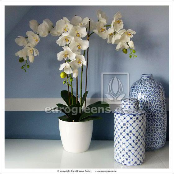 künstliche weiß creme Phalaenopsis Orchidee