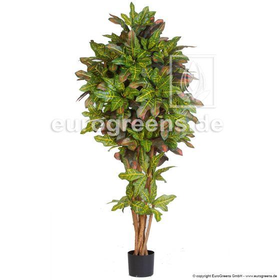 Kunstpflanze Crotonbaum DLX 190cm