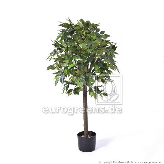 künstlicher Jade Ficus grün ca. 90cm