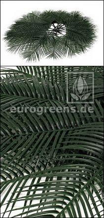 1 Set mit 14  Plastik Phoenix-Palmenwedel