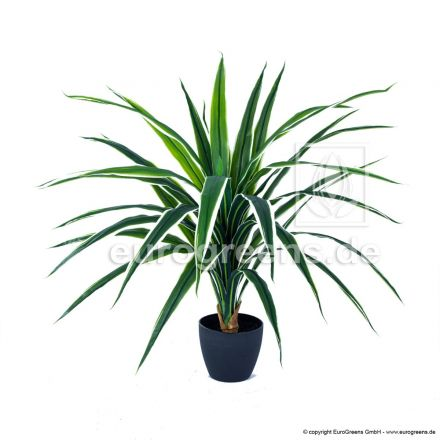 künstliche Dracaena Pflanze ca. 70cm