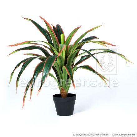 künstliche Dracaena Pflanze ca. 80cm