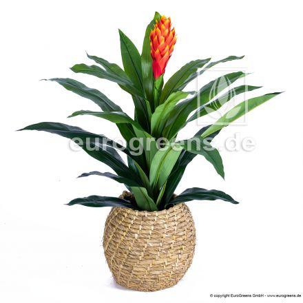 künstliche Guzmania Pflanze ca. 95-100cm