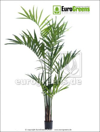 Kunstpalme: künstliche Kentiapalme ca. 240cm