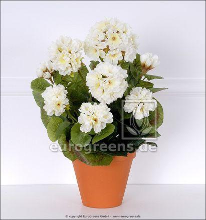 künstliche Pflanze: weiße Geranie