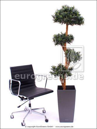 Kunstpflanze Steineibe Podocarpus Riesenbonsai ca. 180cm