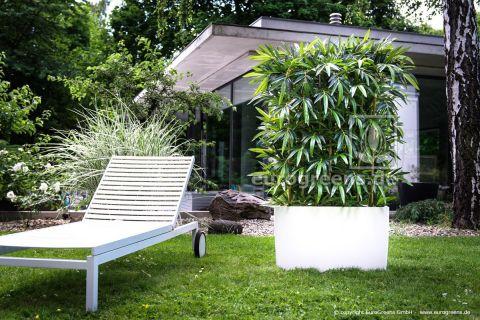 Kunstpflanze Naturstamm Bambus-Hecke ca. 140-150cm