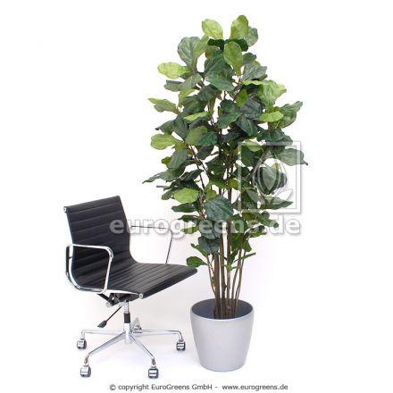 Kunstpflanze grüner Geigenficus ca. 180cm