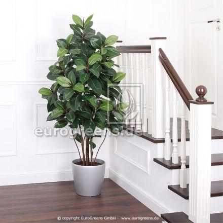 Kunstpflanze Gummibaum ca. 170- 180cm