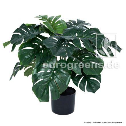 Kunstpflanze Monstera ca. 60-65cm hoch