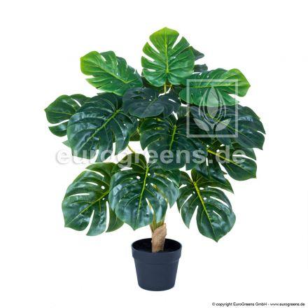 Kunstpflanze Monstera ca. 60-70cm hoch