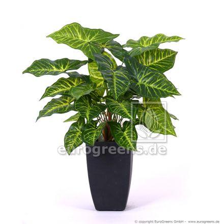 künstliche Nephthytis Pflanze ca. 40cm