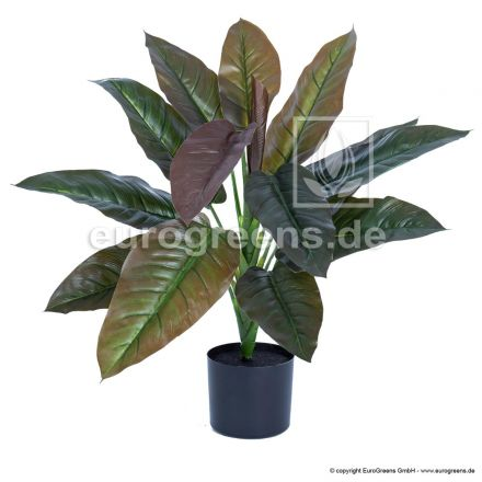 Kunstpflanze Philodendron Imperial Red ca. 65cm