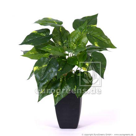 künstliche Scindapsus Pflanze ca. 40-45cm