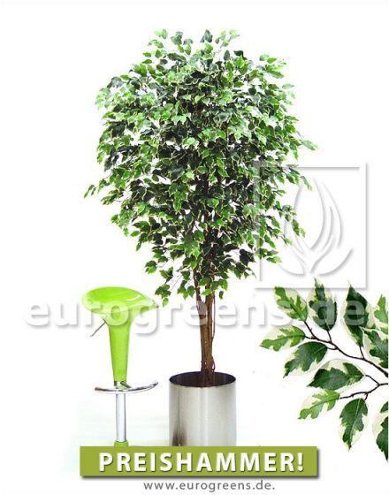 künstlicher Baum Ficus Exotica 180-190cm