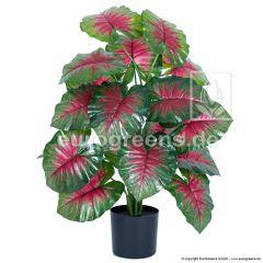 künstliche Caladium Pflanze ca. 70cm
