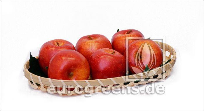 künstlicher Apfel - Kunstapfel