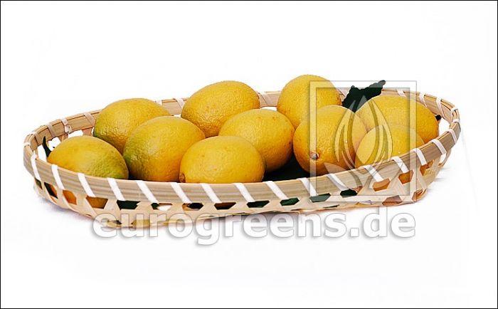künstliche Zitrone