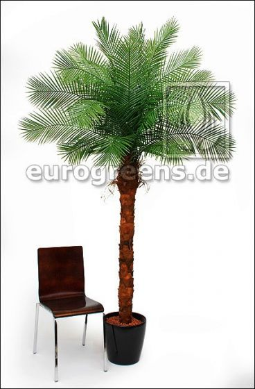 künstliche Phönixpalme ca. 240cm