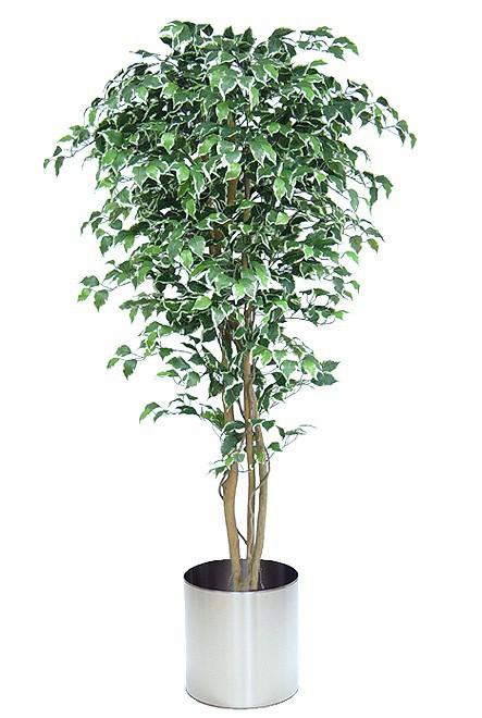 Dekobaum künstlihcer Ficus